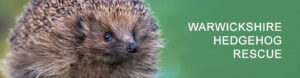 Warwickshire Hedgehog Rescue